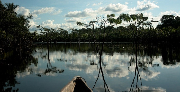 Black Waters-Amazonia